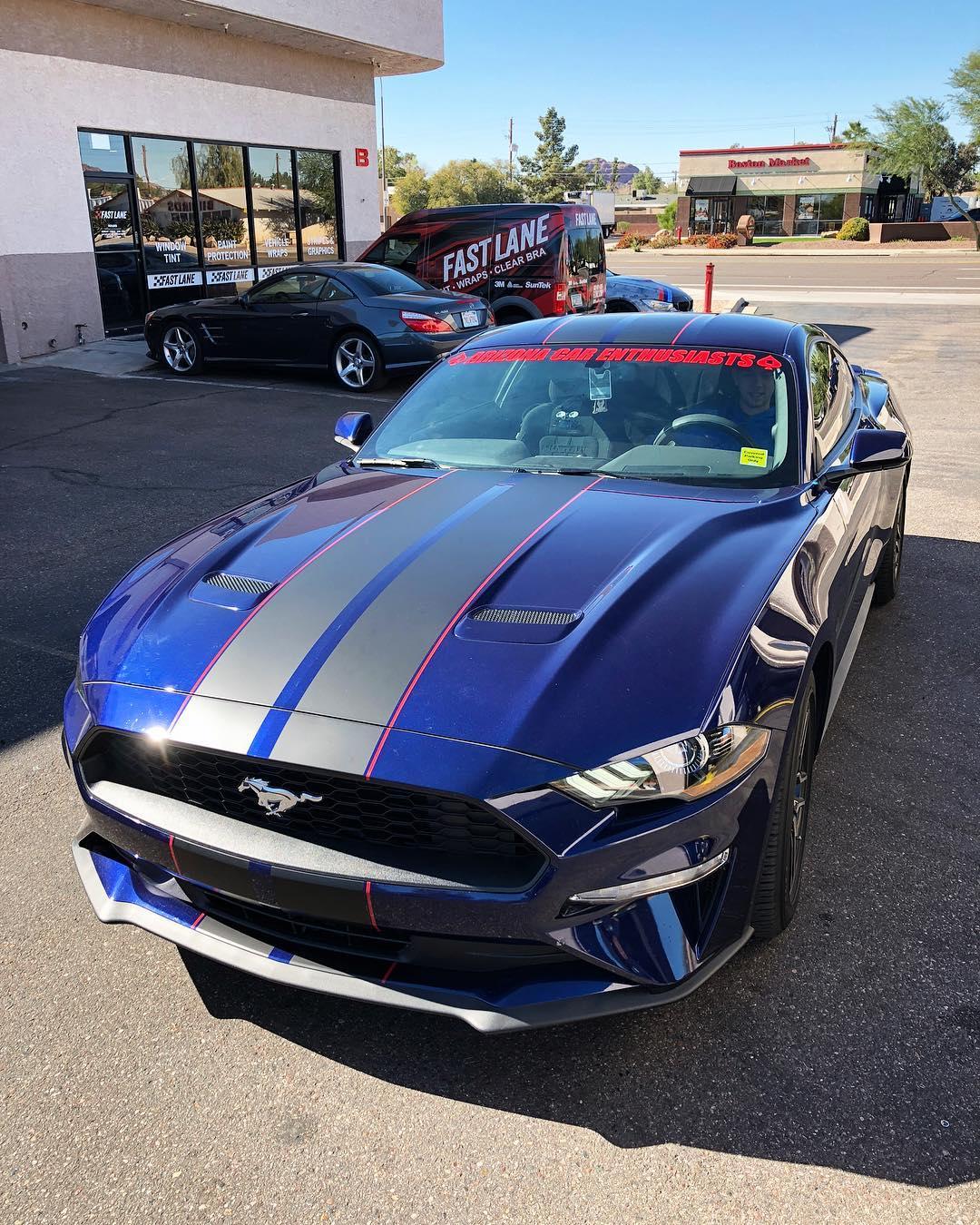 Mustang black stripes